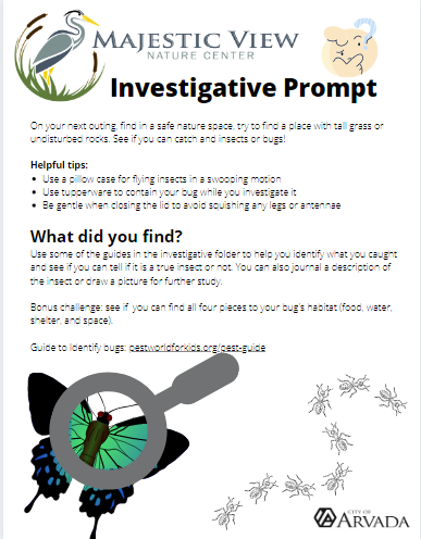 insect investigative prompt thumbnail